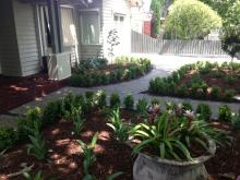 Alphington Deck and Garden bed
